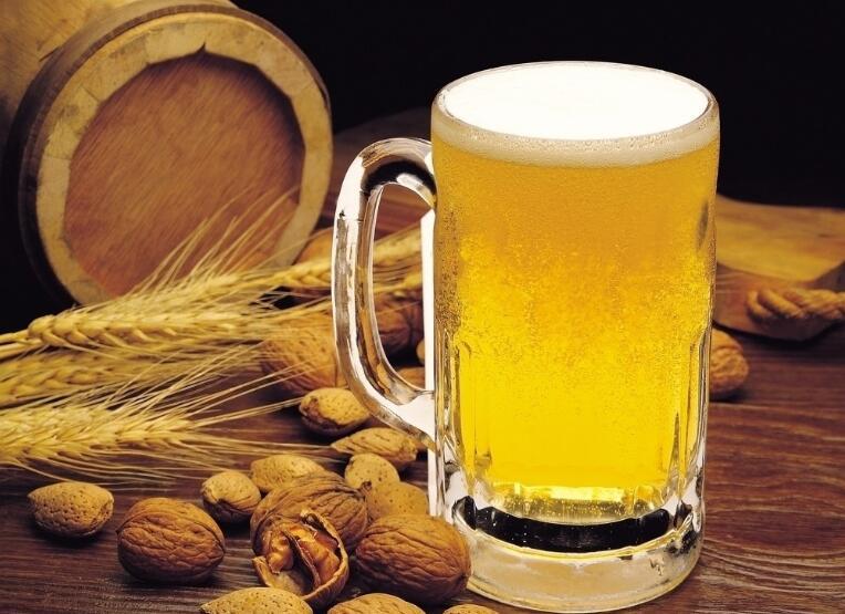 袋式过滤器应用于啤酒过滤技术